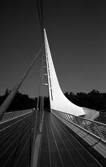 Sundial Bridge (bingley0522) Tags: bessat voigtlandercolorskopar28mmf35 trix hc110h epsonv500scanner redding sundialbridge autaut sacramentoriver