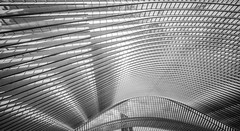 Guillemins Roof (Blende1.8) Tags: bw schwarzweiss liègeguillemins liège station trainstation bahnhof lüttich dach construction konstruktion lines line linien abstract abstrakt architecture architektur modern contemporary urban carstenheyer sony alpha a7m2 ilce7m2 a7ii voigtländer voigtlaender 12mm wideangle wide ultrawideheliar
