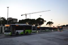 Malta Public Transport BUS631 (Will Swain) Tags: bus buses transport travel malta maltese vehicle vehicles county country english island valletta station 25th june 2017 mpt otokar public bus631 631
