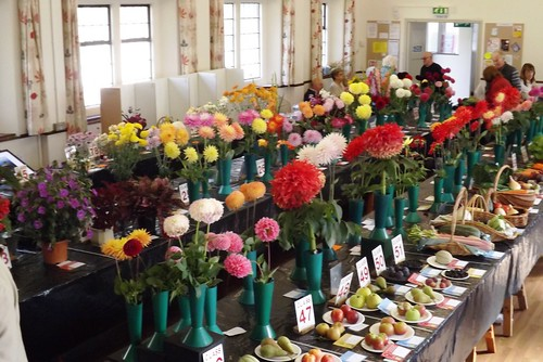 2017 Autumn Flower Show 14