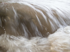 UW110078.jpg (jramspott) Tags: georgia storm river nature water chattahoochee atlanta rain tropicalstorm irma unitedstates us