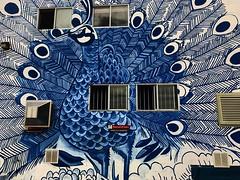 Spread Your Wings (Pennan_Brae) Tags: yvr 604 streetartistry streetartist murals vancouverbc vancity vancouver streetart mural