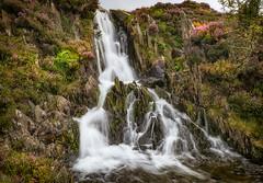 Hidden rock falls... (Lee~Harris) Tags: water waterfall waterfalls rugged foliage growth outdoor wales cascade flowing motion long exposure rocks snowdonia nature g80 lumixg80 landscape river stream