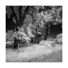 Bradwardine (Sandra Herber) Tags: bradwardine infrared manitoba prairies