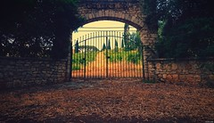 Autumn gate (KOSTAS PILOT) Tags: greece peloponese achaia achaiaclausswinery gate autumn shadows panahaiko sonyz2 sony xperia kostaspilot vineyard colors ελλάδα πελοπόννησοσ αχαιακλάουσ αχαιασ αμπελωνασ πύλη φθινόπωρο πατρα patras μαυροδαφνη autumngate