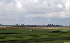 20170917 RXP 9901 + Müller-rijtuigen, Limmen (Bert Hollander) Tags: limmen cas railexperts loc 9901 locomotief rijtuigen mueller tanzzug ledig mat lm zon wolken rxp trein 20181knamr