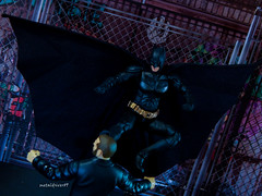 Batbale in action (metaldriver89) Tags: movie nolan trilogy comic batman dark knight rises the thedarkknight thedarkknightrises christian bale christianbale christopher mafex medicom 20 version 2 dc dccomics dcuc universe classics bat gotham gothamcity actionfigures action figure figures toyphotography toy toys photoshop acba articulated book art articulatedcomicbookart selina kyle joker thejoker heathledger heath ledger darkknight darkknightrises shfiguarts sh figuarts bandai tamashii nations tamashiinations people