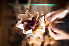 Feixe GleiceBueno-7287 (gleicebueno) Tags: feixe feixeacessórios marianabello manual manualidades redemanual mercadomanual feitoamão handmade artesanal artesão atelie