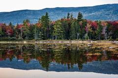 New Hampshire Reflections ((Jessica)) Tags: newhampshire reflections autumn leaves season newengland seasonal fall fallfoliage seasons foliage colorful lincolnnh