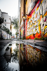 Graffiti Alley (Lee Chu) Tags: project365 rokinon12mmf20ncscs sonynex6 graffiti graffitialley reflection puddle toronto ontario canada