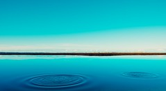 blub,blub (ThorstenKoch) Tags: outdoor pov ocean meer blue holliday fuji fujifilm xt10 photographer photography nature dog green sun sunny sonne beach strand silence ruhe water sand