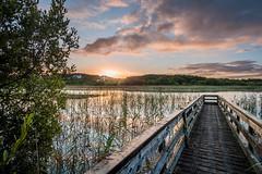 Moyhastin Sunrise (mickreynolds) Tags: august2017 comayo ireland lake moyhastinlake nx500 samyang12mm westport wildatlanticway sunrise jetty clouds