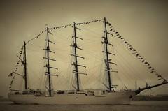 BAP Unión (Hugo Sluimer) Tags: bap unión bapunión onzehaven portofrotterdam vlaardingen ha port