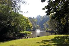 Botanical gardens (Gillian Everett) Tags: ssc botanical gardens hervey bay queensland explore explored