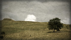 the white cloud (Ben Bill) Tags: sliderssunday hss cantal