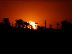 A moment in time (Scott Douglas Worldwide) Tags: az arizona awesome america amature american atlasta adorable awsome antique sky s sunrays smiling sun sunset sunrise seagull keeper k lakewobegon lake pink perfect p peaceful paradise palmtree palm palms palmtress pretty