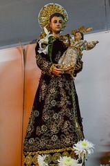 Replica of San Antonio de Padua, patron saint of Bgy. Kalumpang, Marikina City (Fritz, MD) Tags: kalumpangmarianexhibit2017 marianexhibit kalumpang kalumpangmarikinacity sanantoniodepaduaparish parokyanisanantoniodepadua marikinacity sanantoniodepadua saintanthonyofpadua