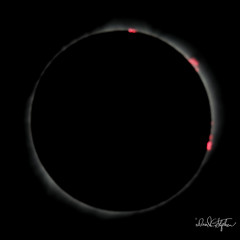 Solar Flares Emphasized (dcstep) Tags: ef500mmf4lisii ef14xtciii spectrumtelescopeglasssolarfilter induro indurotripod mitchell nebraska unitedstates us n7a9941dxo2 canon5dmkiv allrightsreserved copyright2017davidcstephens dxoopticspro1142 eclipse totaleclipse