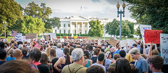2017.08.13 Charlottesville Candlelight Vigil, Washington, DC USA 8050