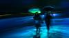 River of light (Sydney Vivid) - DSC5046 (cleansurf2) Tags: lightpainting city cinamatic cityscape sony screensaver surreal a7ii people black blue green mood mirrorless minimalism movement motion blur sydney vivid rain night dark street longexposure