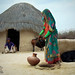 Colors of Thar