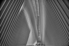 Inside the Oculus (Daniel Schwabe) Tags: architecture lines shadow repetition bw santiagocalatrava oculus manhattan nyc usa travel tourism