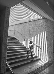 Estación de Alameda (2) (leuntje) Tags: valencia spain espagne turia alameda subwaystation metro architecture calatrava santiagocalatrava bw