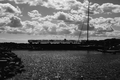 Black and white harbour
