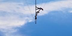 Pulling me up (Alex L'aventurier,) Tags: montreal montréal quebec cirque circus sky ciel nuages clouds acrobate complètementcirque