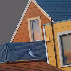 rooftop roundup (msdonnalee) Tags: roof house casa haus dom maison architecturaldetail window