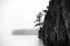 Headland (OneEighteen) Tags: sailing pacificnorthwest britishcolumbia headland tree rocks cliff blackandwhite bw