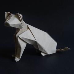 Cat designed by  Hideo Komatsu   [Hideo Komatsu challenge 31/50] (Orizuka) Tags: origami cat hideokomatsu grainypaper hkchallenge