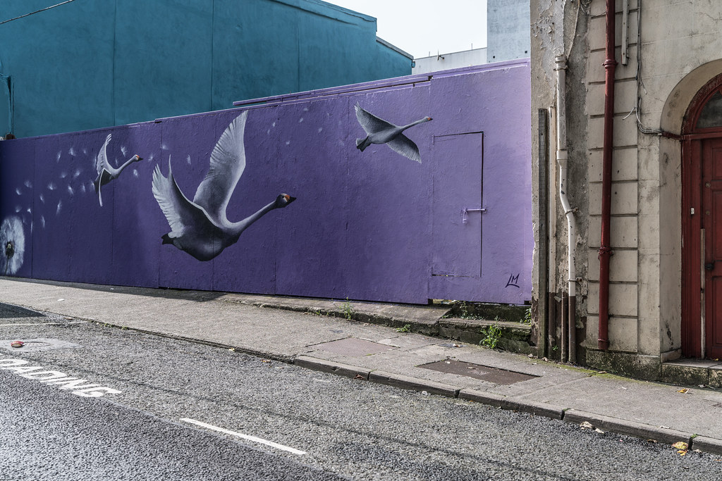 WATERFORD WALLS [AN ANNUAL INTERNATIONAL STREET ART FESTIVAL]-132029
