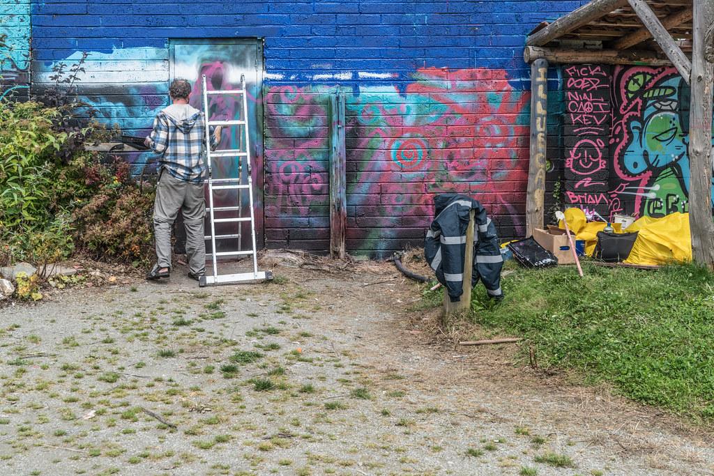 WATERFORD WALLS [AN ANNUAL INTERNATIONAL STREET ART FESTIVAL]-132277