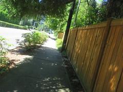 IMG_6485 (Andy E. Nystrom) Tags: bellevue washington wa bellevuewashington clydehill clydehillwashington