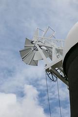 Holgate Windmill, July 2017 - 8
