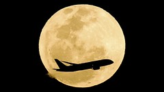 Jetstar Australia Boeing 787 and Airbus A320 Full Moon Transits Footage Using Canon EOS C200 (ePixel Images) Tags: jetstaraustralia jetstarairways jetstar boeing airbus boeing787 airbusa320 dreamliner fullmoon cornmoon septemberfullmoon lunar canoneosc200 cinemarawlight uhdvideo occultation silhouette astrophotography interstellar cosmos universe cosmology aircraft flight aviation aviationphotography planespotting airline sky night moon transit moontransit astronomy travel flymetothemoon canon canonglobal