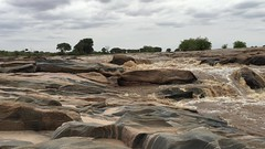 Video of Beautiful Lugards Falls, Galana River - Tsavo East, Kenya 3050 (Teagden (Jen Hall)) Tags: galana river galanariver lugards falls lugard lugardsfalls lugardfalls jenniferhall jenhall jenhallphotography landscape landscapephotography scenic video iphonevideo safari kenyasafari africasafari africansafari dkgrandsafaris tsavo east tsavoeast tsavokenya tsavoafrica kenya kenyaafrica kenyalandscape tsavolandscape africa african africanphotography smoothrocks carved sculpted
