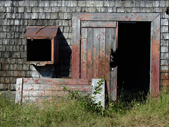 Broken doors of a former sardine smokehouse in Seal Cove on Grand Manan Island (Bay of Fundy), New Brunswick (Ullysses) Tags: sealcove grandmananisland bayoffundy newbrunswick canada summer été brokendoors portes