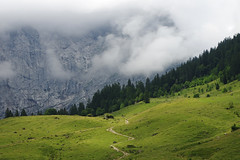 Alpine path (pentars) Tags: alps alpine landscape scenery beautiful view mountains clouds nature weather hills rainy trees field sky pentax k5ii fa 2490