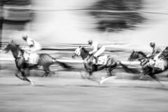 Steeplechase (nataliekrovetz) Tags: ff2017 foxfield foxfieldfall horses panning blur blurry blurred motion speed jockeys charlottesville virginia