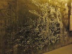 Vhils / Paris - 13 aug 2017 (Ferdinand 'Ferre' Feys) Tags: paris france streetart artdelarue graffitiart graffiti graff urbanart urbanarte arteurbano ferdinandfeys vhils