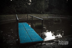 17/09/17 - Session #13 (The-Developing-Photographer) Tags: abandoned outdoorpool pool trees urbex