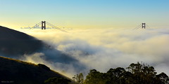 Complete Low Fog Event|Golden Gate, San Francisco (miltonsun) Tags: lowfogevent goldengatebridge sanfrancisco lowfog foginsf bridge sfskyline bayarea wave ocean shore seaside coast california landscape outdoor clouds sky rollinghills rocks mountains sunrise morning
