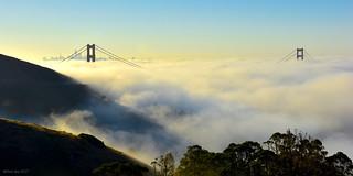Complete Low Fog Event|Golden Gate, San Francisco