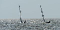 2017-07-31_Keith_Levit-Sailing_Day2046.jpg (Keith Levit) Tags: keithlevitphotography gimli gimliyachtclub canadasummergames interlake laser winnipeg manitoba singlehandedlaser sailing
