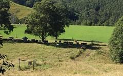 3565 Allyn River Road, Gresford NSW