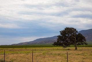 Soledad, California