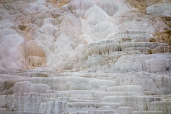 Yellowstone National Park - Winter-11 (hotcommodity) Tags: yellowstonenationalpark winter snow ice frozen grandprismaticsprings hotsprings geothermal nature wilderness mist steam clouds grey spring buffalo bison