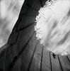 work in progress.. (Karl Johan) Tags: silo workinprogress sweden sverige malmö limhamn skåne hasselblad500cm hasselblad 500cm 6x6 mf mediumformat fujineopanacros fuji neopan acros film analog blackandwhite blackwhite rodinal bw ishootfilm epsonv600 epson v600 bwfp monochrome classicblackwhite distagon504fle distagon 504 fle cf 120 outdoor demolition concret wires old